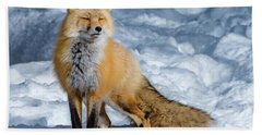 Fox On A Winter Afternoon Bath Towel