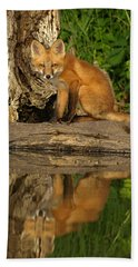 Fox Reflection Bath Towel by James Peterson