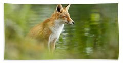 Fox Reflections Hand Towel