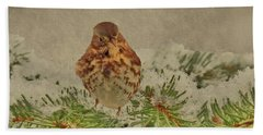 Fox Sparrow In Winter Hand Towel by Janette Boyd