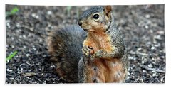 Fox Squirrel Breakfast Bath Towel by Sheila Brown