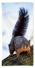 Bath Towel featuring the photograph Fox Squirrel On Alert by Onyonet  Photo Studios
