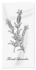 French Lavender Botanical Drawing Black And White Hand Towel