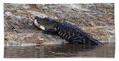 Bath Towel featuring the photograph Fresh Fish by Al Powell Photography USA