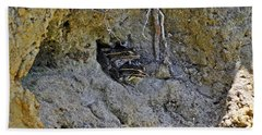 Bath Towel featuring the photograph Friendly Frogs by Al Powell Photography USA