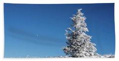 Frigid Winter Day On The Appalachian Trail Bath Towel