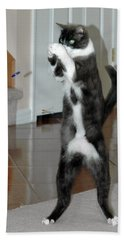Frisbee Cat Bath Towel