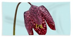 Bath Towel featuring the photograph Fritillaria Meleagris Blue Background by Paul Gulliver