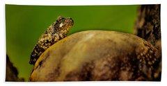 Frog Waits Bath Towel