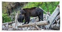 From The Great Bear Rainforest Hand Towel by Scott Warner