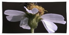 Frontal View Of A Bee On A Flower Hand Towel