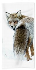 Frosty Fox Hand Towel