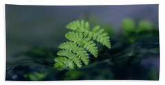 Frozen Fern II Hand Towel