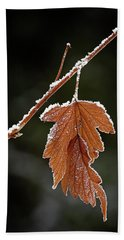 Hand Towel featuring the photograph Frozen Leaf - 365-287 by Inge Riis McDonald