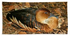 Fulvous Whistling Duck Hand Towel