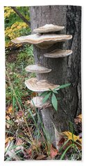 Fungi Hand Towel by Christine Lathrop