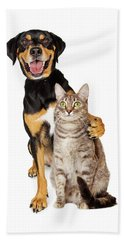Funny Photo Of Dog With Arm Around Cat Bath Towel