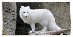 Furry Arctic Fox  Hand Towel by Athena Mckinzie