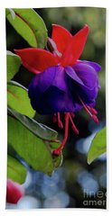 Fuschia Hand Towel