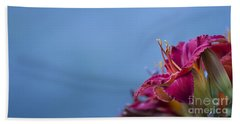 Hand Towel featuring the photograph Fuchsia On Blue by Andrea Silies