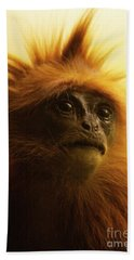 Hand Towel featuring the photograph Fuzzhead by Xn Tyler
