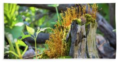 Hand Towel featuring the photograph Fuzzy Stump by Bill Pevlor