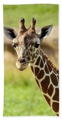 Bath Towel featuring the photograph G Is For Giraffe by John Haldane