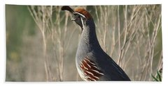 Hand Towel featuring the photograph Gambel's Quail by Frank Madia