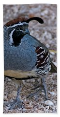 Hand Towel featuring the photograph Gambel's Quail H31 by Mark Myhaver