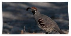 Gambel's Quail Hand Towel by Martina Thompson