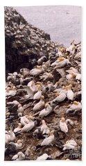 Gannet Cliffs Bath Towel