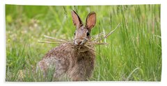 Gathering Rabbit Hand Towel by Terry DeLuco