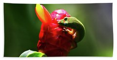 Hand Towel featuring the photograph Gecko #1 by Anthony Jones