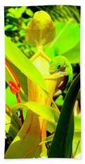 Gecko On Mosquito Catcher Orchid Bath Towel