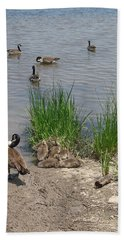 Geese And Goslings Hand Towel by Ellen Tully