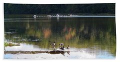 Geese At Rest And Flying Bath Towel by Phil Perkins