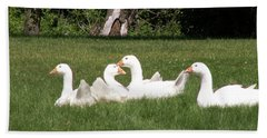 Geese In The Grass Hand Towel