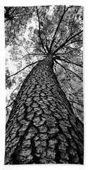 Hand Towel featuring the photograph Georgia Pine by Dan Wells