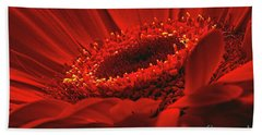 Hand Towel featuring the photograph Gerbera Daisy In Red by Sharon Talson