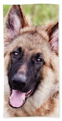 German Shepherd Dog Hand Towel by Stephanie Frey