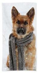 German Shepherd Wearing Scarf In Snow Hand Towel