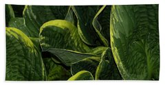Giant Hosta Closeup Bath Towel