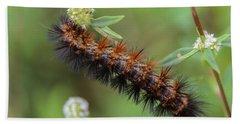 Giant Leopard Moth Caterpillar Hand Towel