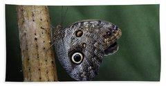 Giant Owl Butterfly On Screw Pine Bath Towel