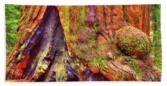 Giant Sequoia Base With Fire Scar Hand Towel
