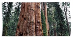 Bath Towel featuring the photograph Giant Sequoia II by Kyle Hanson
