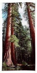 Giant Sequoia Trees Hand Towel