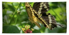 Giant Swallowtail On Lantana Bath Towel