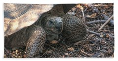 Giant Tortoise At Urbina Bay On Isabela Island  Galapagos Islands Bath Towel
