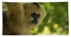 Gibbon Portrait Bath Towel